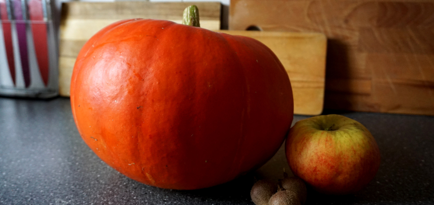 Featured image of post Our proud pumpkin