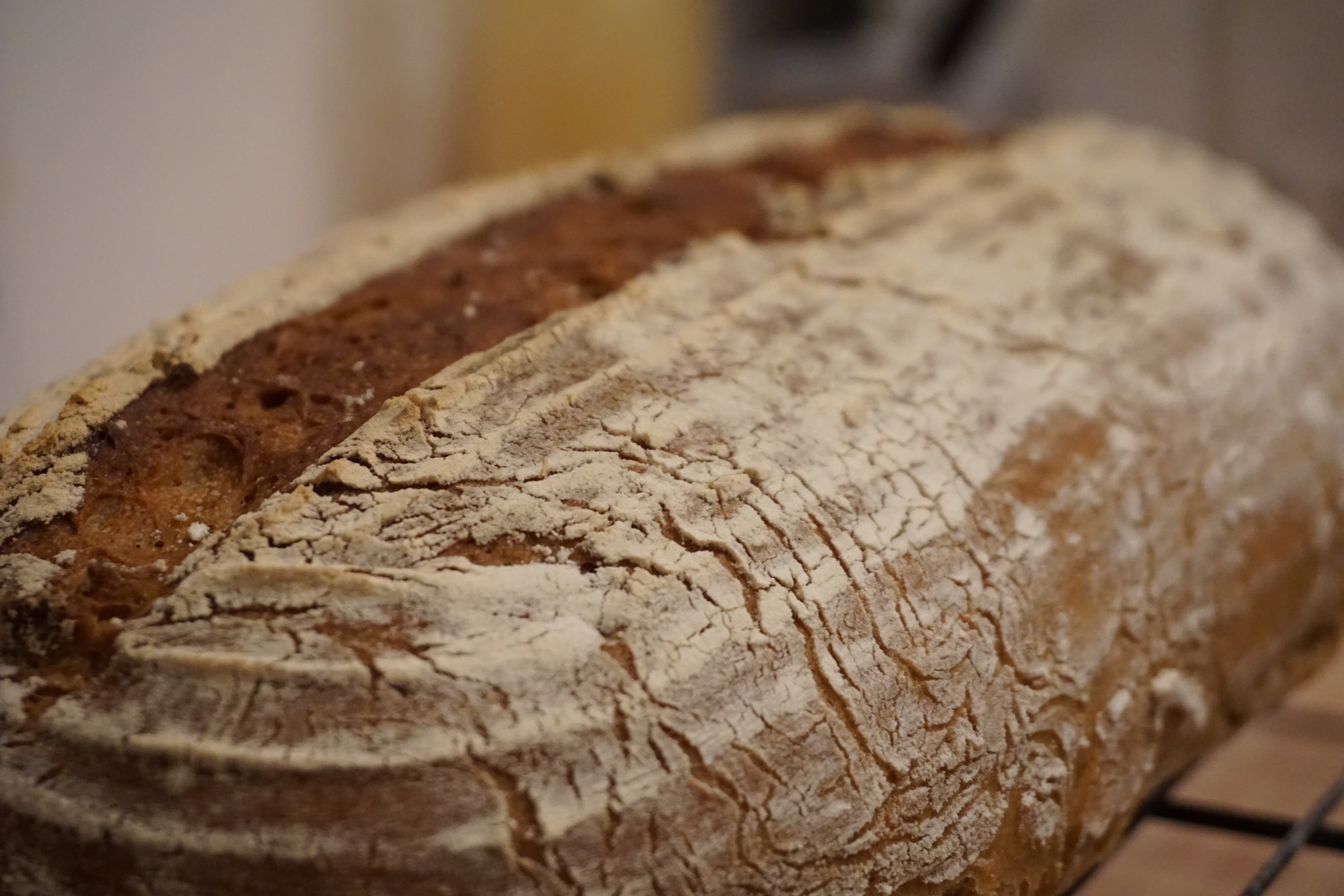 Featured image of post Rye-wheat bread